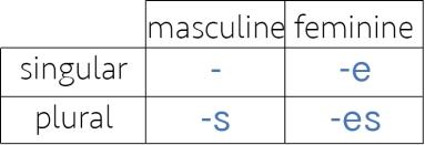 gender number adj